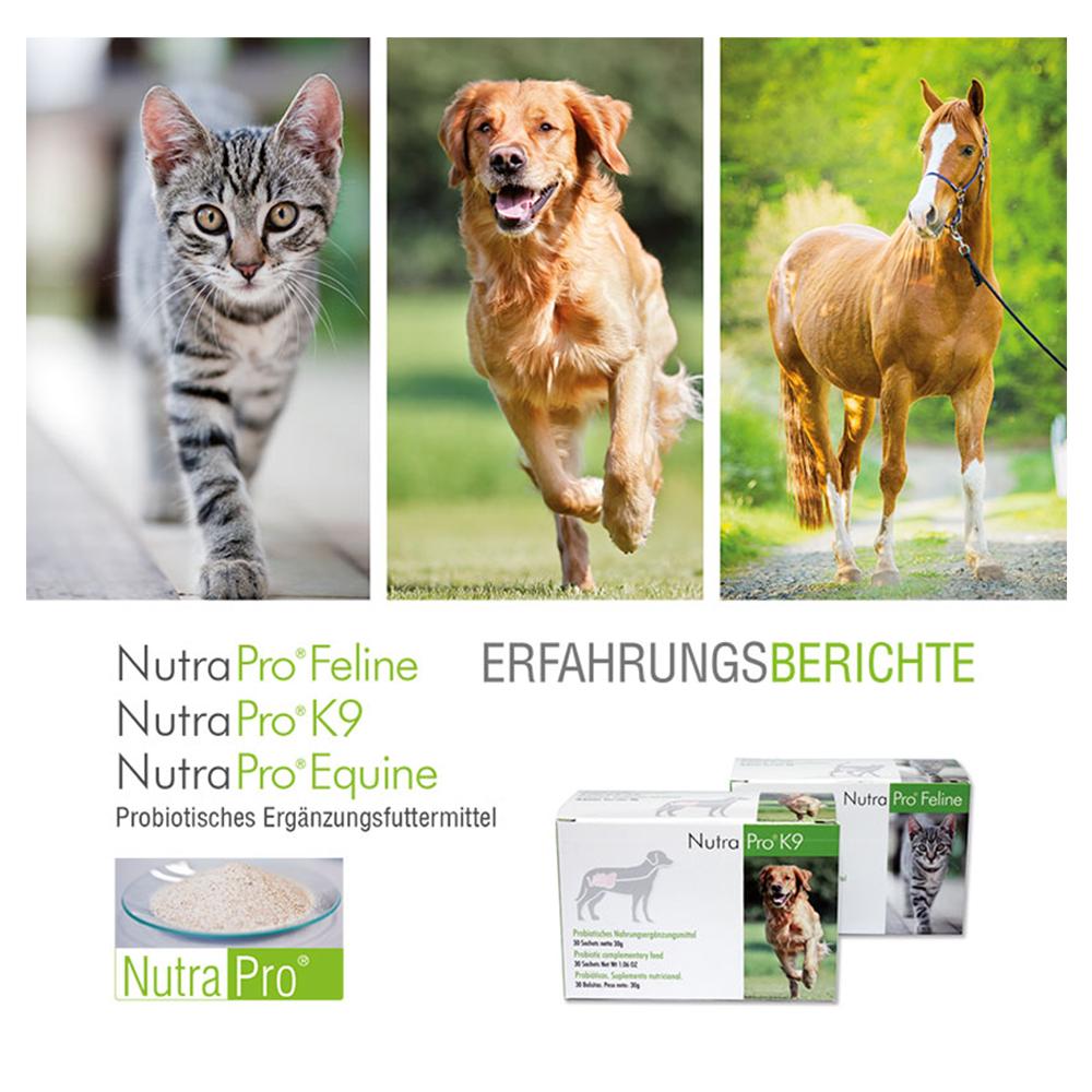 Eerfahrungsberichte NutraPro