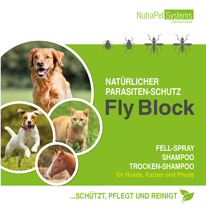 FLY-Block-Flyer