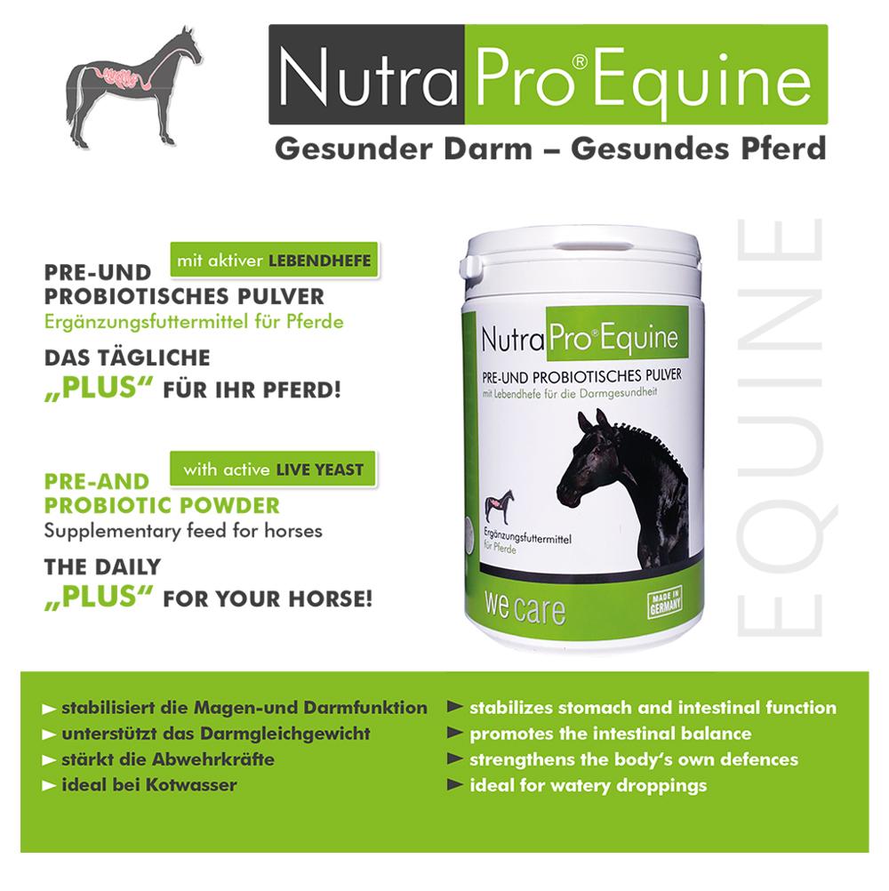 Flyer-Nutra Pro-Equine
